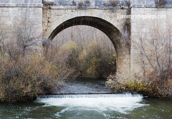 Puente sobre el Pisuerga. Cordovilla la Real. Cerrato palentino. Palencia. Castilla y León. España. © Javier Prieto Gallego