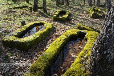 Sarcófagos tallados en roca pertenecientes a la necrópolis de La Nava. Siglo XIV. Palacios de la Sierra. Burgos. Castilla y León. España. ©Javier Prieto Gallego