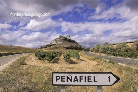 Castillo de Peñafiel y viñedos. Museo del Vino. Ribera del Duero. Valladolid. Castilla y León. España. © Javier Prieto Gallego;