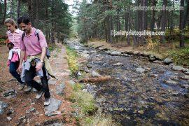 Excursionistas junto al río Eresma recorren el Camino de las Pesquerías Reales, en la Sierra de Guadarrama. Pinares de Valsaín. Segovia. Castilla y León. España. © Javier Prieto Gallego