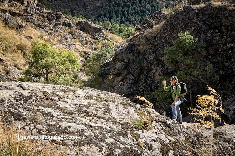 Río Cambrones. Sierra de Guadarrama. La Granja de San Ildefonso. Segovia. Castilla y León. España. © Javier Prieto Gallego