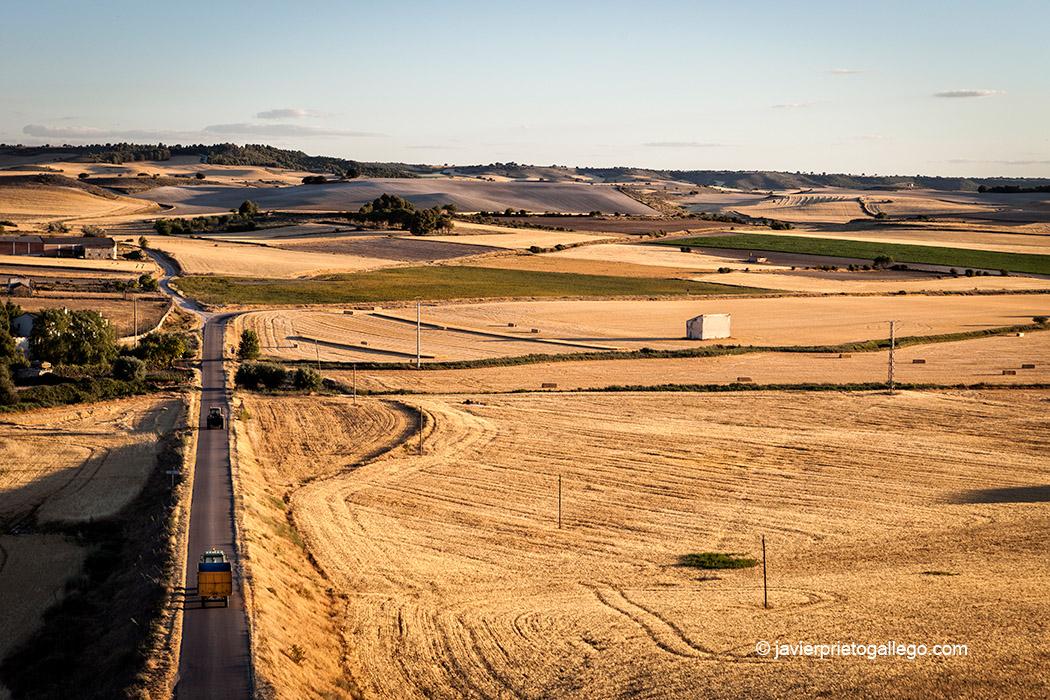 Panorámica desde Vertavillo. Palencia. El Cerrato Castellano. Castilla y León. España © Javier Prieto Gallego