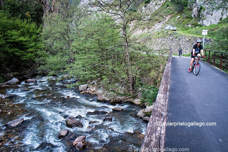 La Senda del Oso atraviesa el río Trubia cerca de Entrago. Asturias. España. © Javier Prieto Gallego