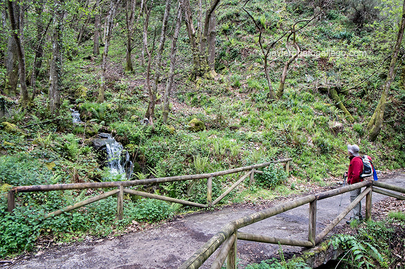 Un senderista hace un alto en una zona boscosa del desfiladero por el que discurre la Senda del Oso. Asturias. España. © Javier Prieto Gallego