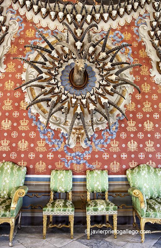 Salón de los Trofeos decorado con trofeos de caza. Castillo de Sarre. Era la residencia estival de los Saboya en Val d'Aosta. Valle de Aosta. Alpes Italianos. Italia. © Javier Prieto Gallego