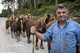 Un ganadero regresa con sus caballos al atardecer. Zona de Las Machorras. Burgos. Castilla y León. España. 2005 © Javier Prieto Gallego