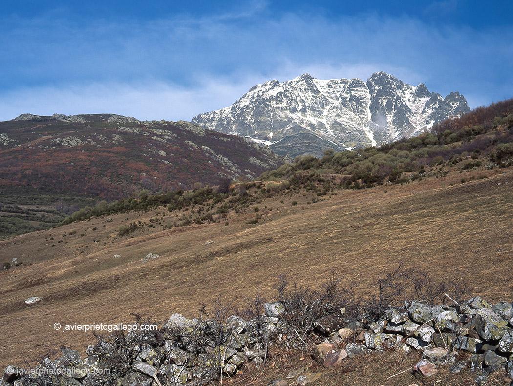 El Curavacas (2.520 m), una de las montañas emlblemáticas de la Montaña Palentina. Montaña Palentina. Palencia. Castilla y León. España. © Javier Prieto Gallego