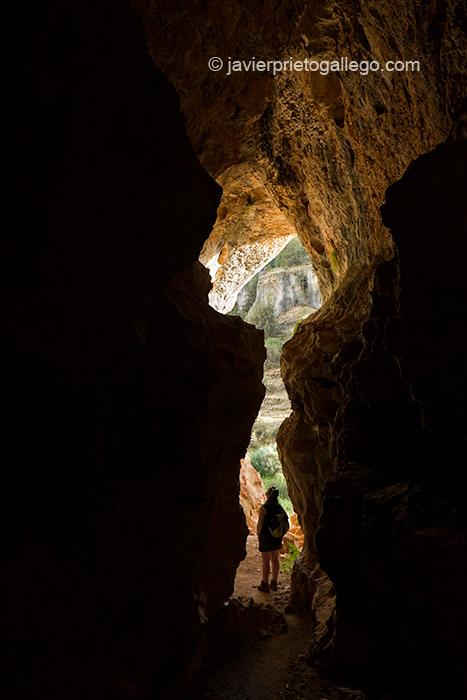 Una de las cuevas del Cañón del Río Lobos. Parque Natural Cañón del Río Lobos. Soria. Castilla y León. España. © Javier Prieto Gallego;
