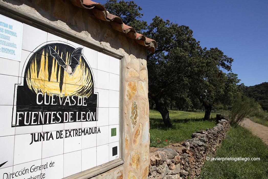 Entrada a las Cuevas de Fuentes de León. Monumento Natural. Localidad de Fuentes de León. Comarca de Tentudía. Badajoz. Extremadura. España. 2007 © Javier Prieto Gallego