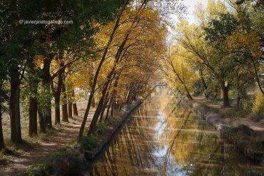 Canal de Castilla. Ramal de Campos. Medina de Rioseco. Valladolid. Castilla y León. España. © Javier Prieto Gallego;
