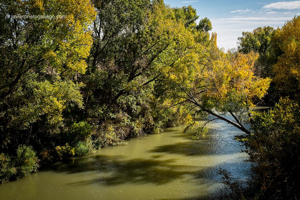 El río Duero en el paseo que une Peñafiel y Pesquera de Duero por el sendero señalizado GR.14. Ribera del Duero. Valladolid. Castilla y León. España © Javier Prieto Gallego;