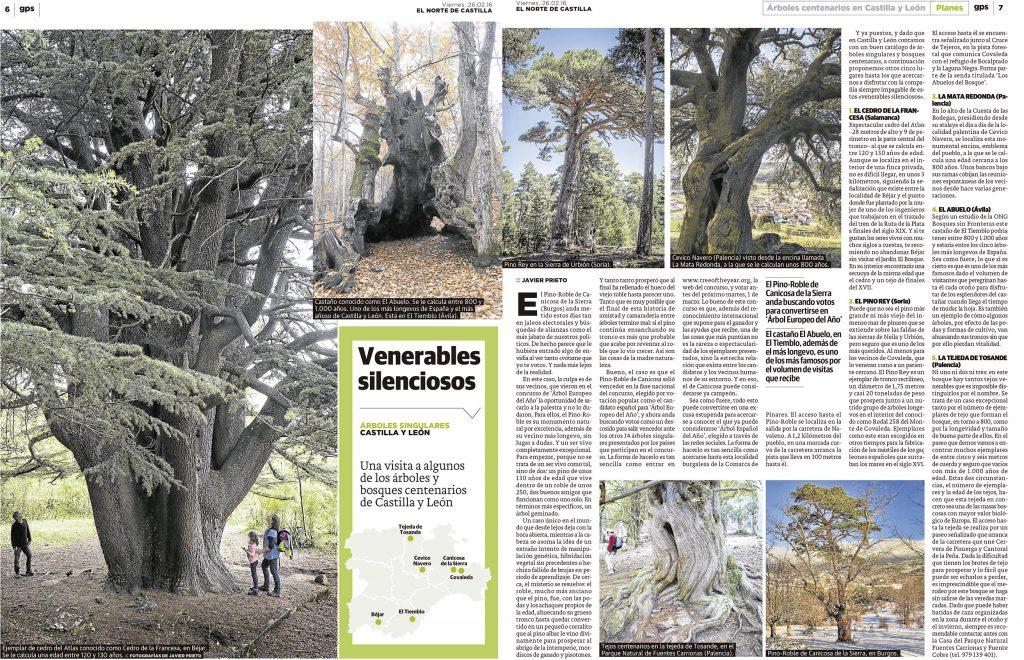 Reportaje sobre árboles centenarios publicado por Javier Prieto Gallego en EL NORTE DE CASTILLA.