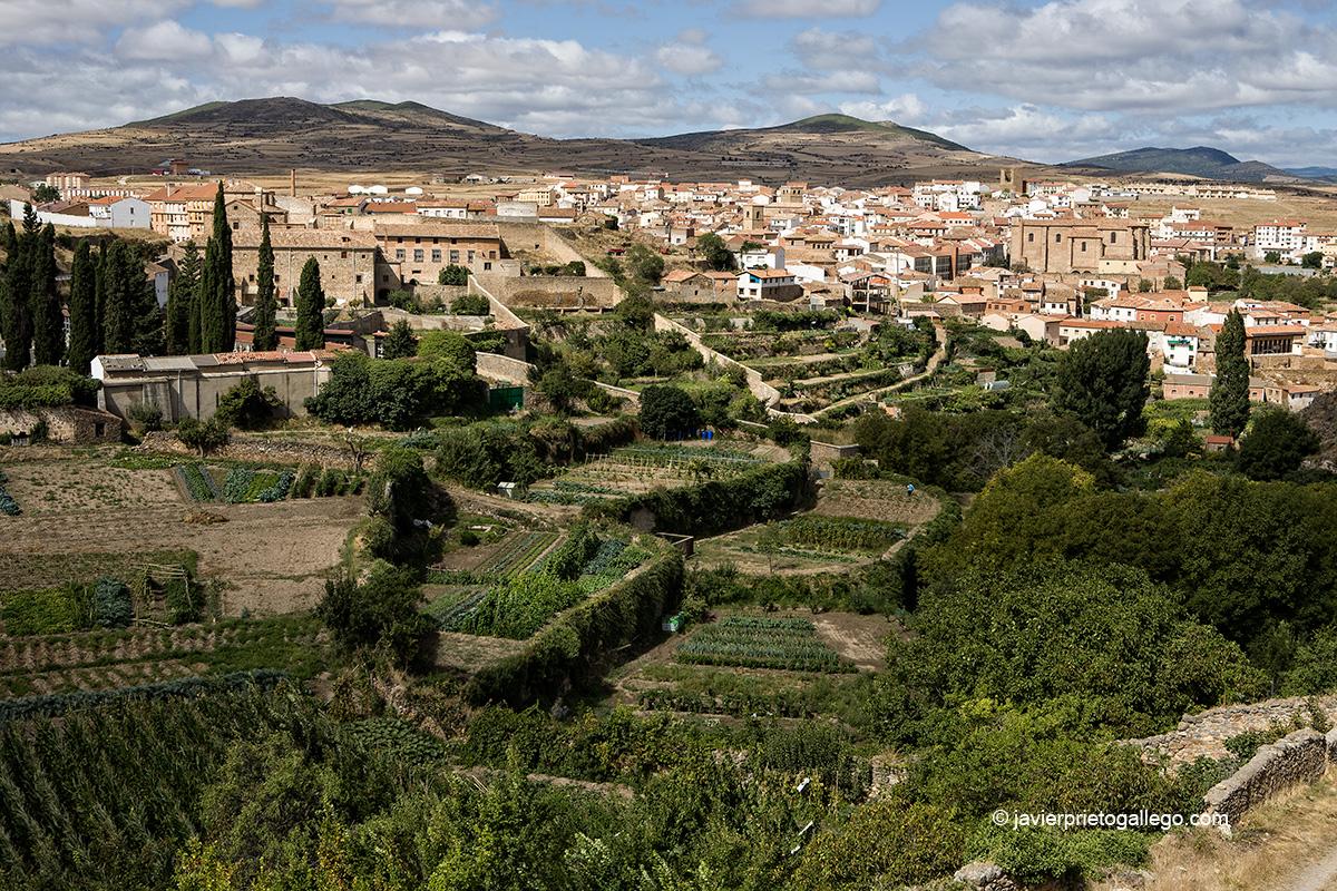 Huertos. Ágreda. Soria. Castilla y León. España. © Javier Prieto Gallego