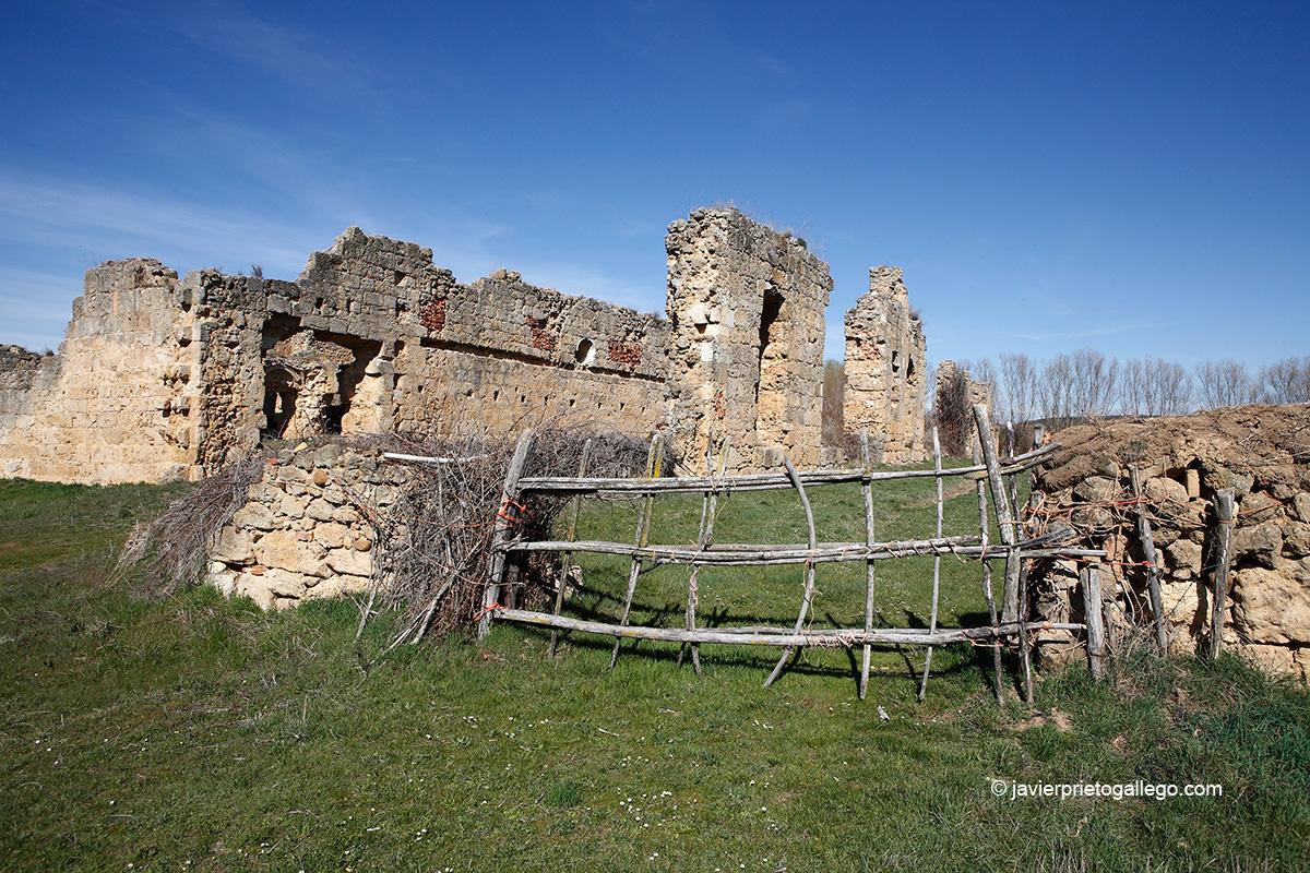 Ruinas del monasterio de San Pedro de Eslonza. Localidad de Santa Olaja de Eslonza. León. Castilla y León. España © Javier Prieto Gallego