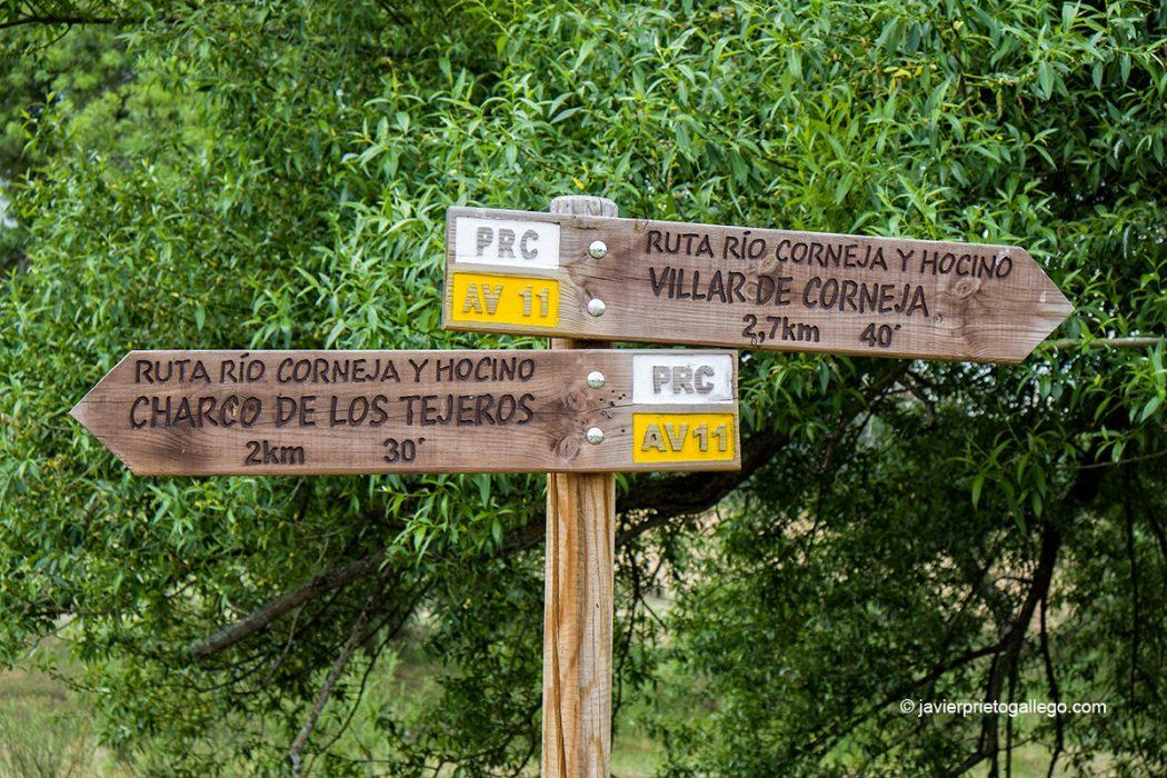 Vegetación de ribera y señalización en el recorrido del sendero PRC-AV11. Río Corneja y Hocino. Valle del Corneja. Ávila. Castilla y León. España. © Javier Prieto Gallego
