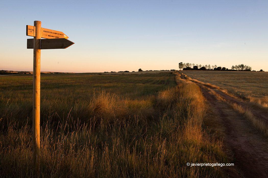 Señalización del Sendero del Campo de Muñó que discurre por los alrededores de Mahamud. Burgos. Castilla y León. España. © Javier Prieto Gallego
