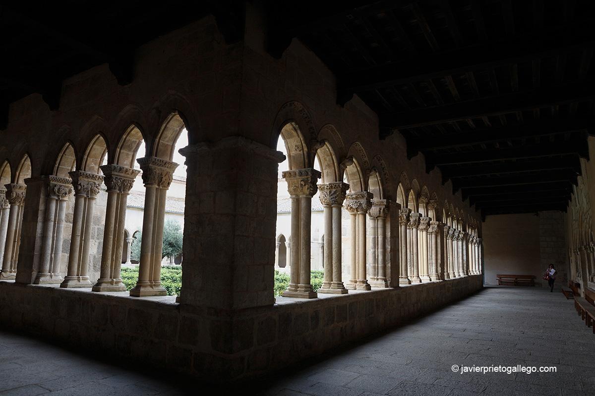 Claustro de la iglesia de Santa María la Real de Nieva. Segovia. Castilla y León. España.© Javier Prieto Gallego