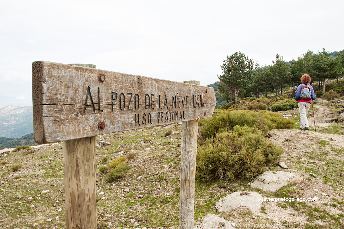 Señalización del sendero del  Pozo de la Nieve del Puerto de Casillas. Pozo de la Nieve. Ávila. Castilla y León. España. © Javier Prieto Gallego;