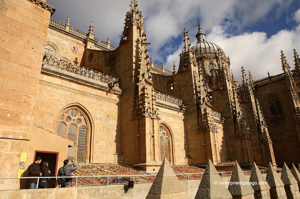 Recorrido por la Exposición Ieronimus. Catedral Vieja. Salamanca. Castilla y León. España. © Javier Prieto Gallego