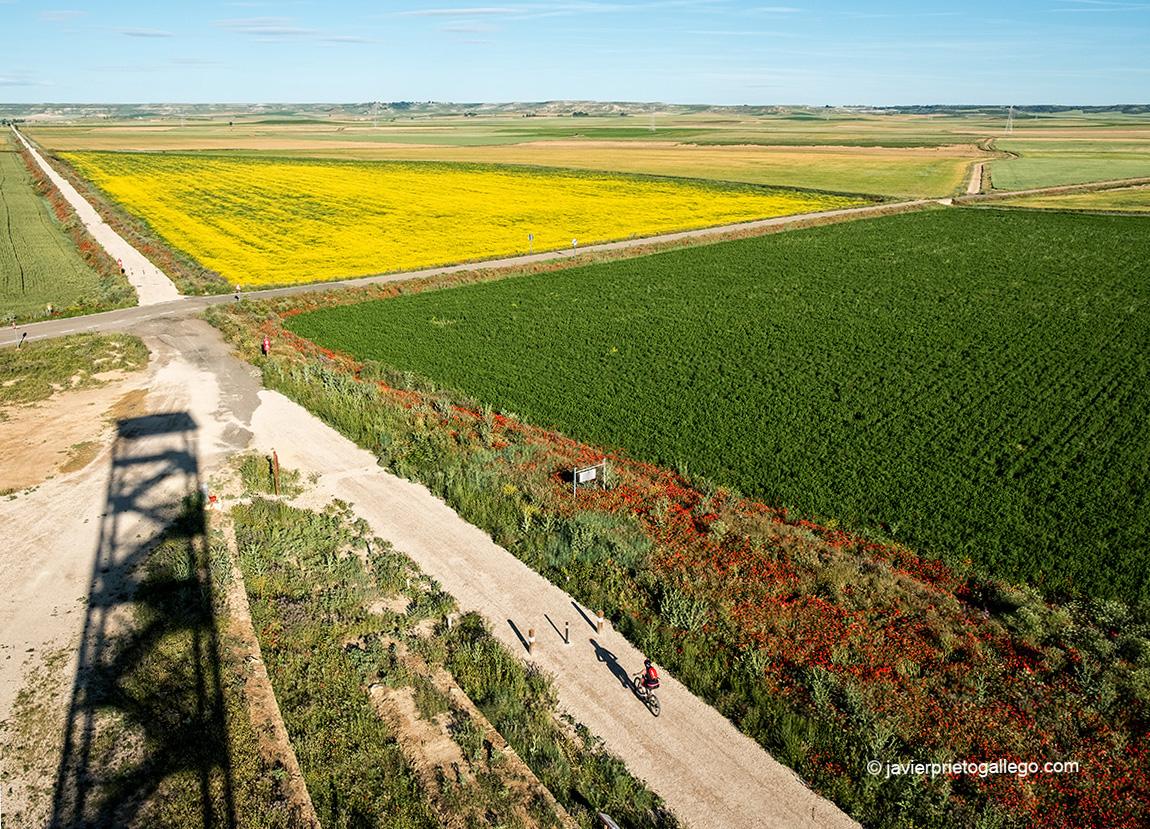 Un ciclista circula por la Vía Verde del Tren Burra. Torre de Mazariegos. Palencia. Castilla y León. España © Javier Prieto Gallego;