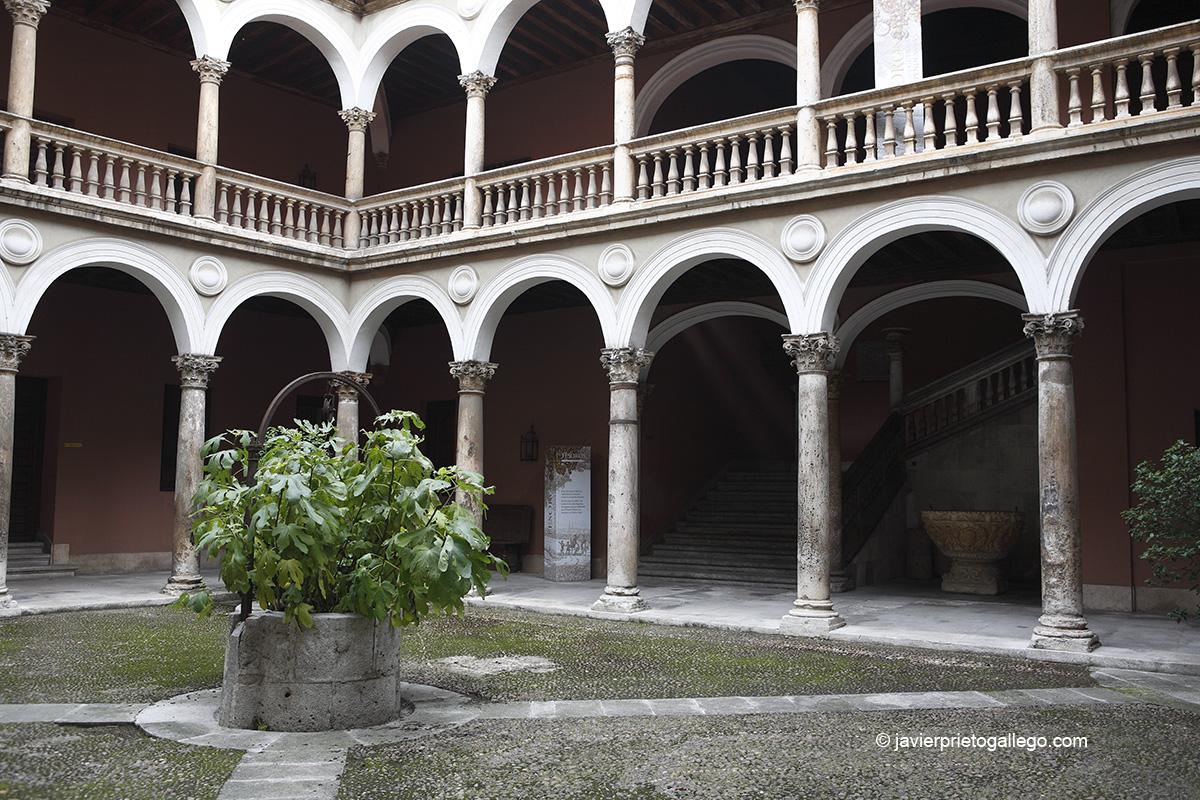 Patio del palacio de Fabio Nelli. Museo de Valladolid. Valladolid. Castilla y León. España © Javier Prieto Gallego