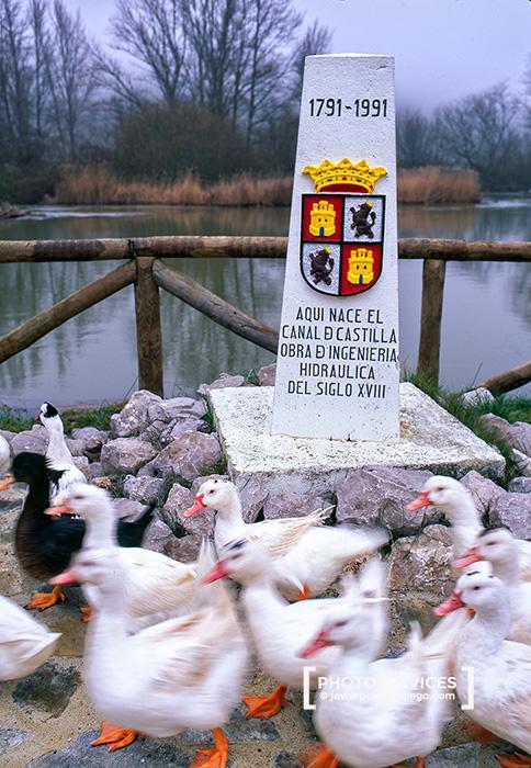 Incio del Castilla y León en Alar del Rey. Palencia. España © Javier Prieto Gallego