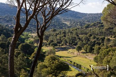 Un paseo en torno a El Hoyo de Pinares (Ávila)