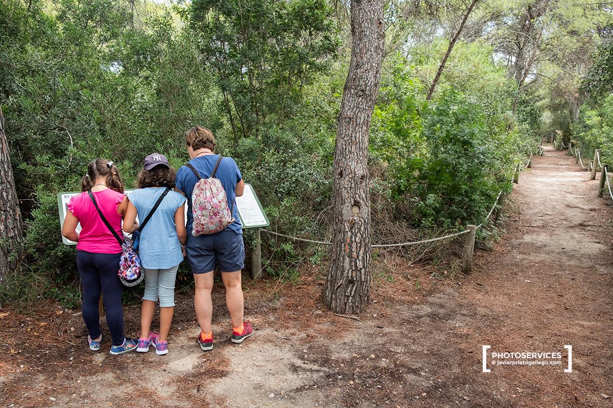 Área de Interpretación de Racó de LOlla. La Albufera. Valencia. Comunidad Valenciana. España © Javier Prieto Gallego