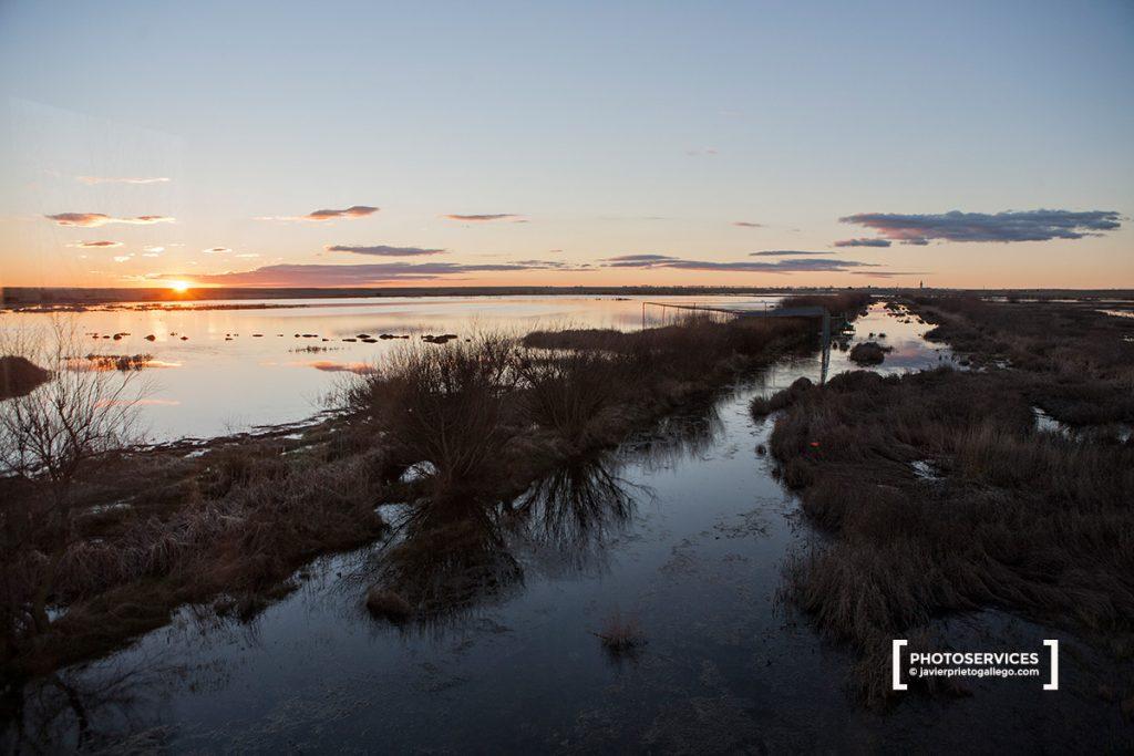 Laguna de La Nava. Fuentes de Nava. Palencia. Castilla y León. España © Javier Prieto Gallego