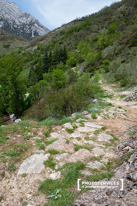 Restos de la calzada romana cerca de Montuerto. Río Curueño. León. Castilla y León. España © Javier Prieto Gallego;