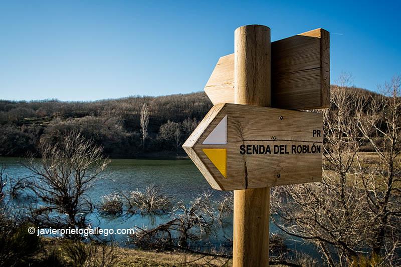 Senda del Roblón de Estalaya. Parque Natural de Fuentes Carrionas y Fuente Cobre. Palencia. Castilla y León. España © Javier Prieto Gallego