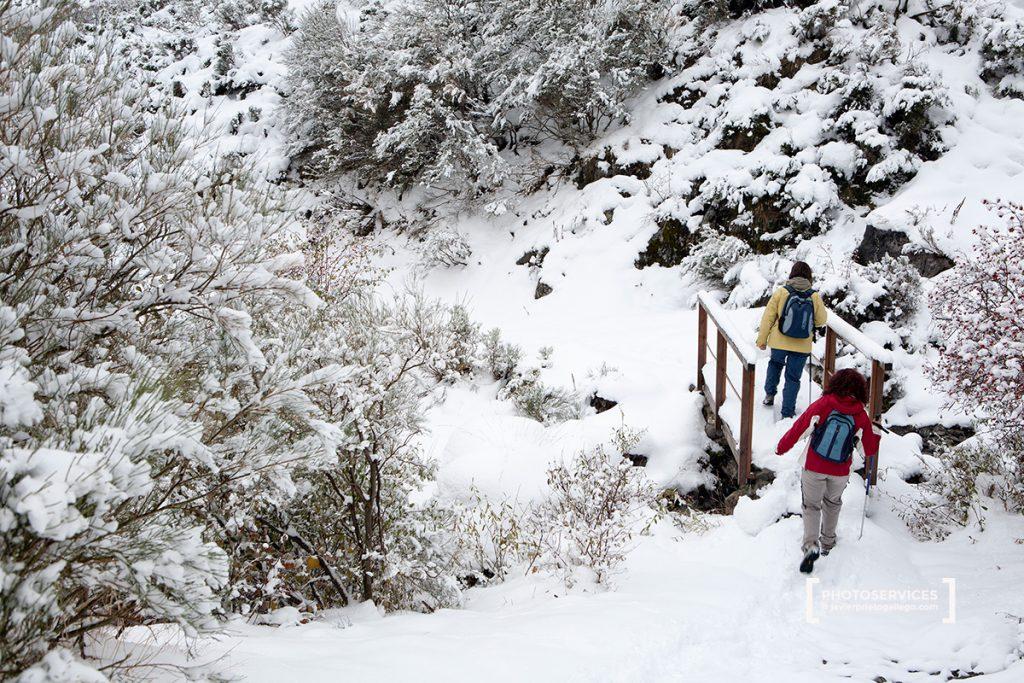 Senda del arroyo Mazobre. Parque Natural de la Montaña Palentina. Palencia. Castilla y León. España © Javier Prieto Gallego