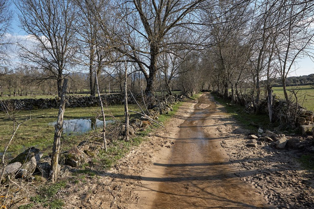 Camino entre vallas. La Adrada. Sierra de Gredos. Valle del Tiétar. Ávila.Castilla y León. España. © Javier Prieto Gallego