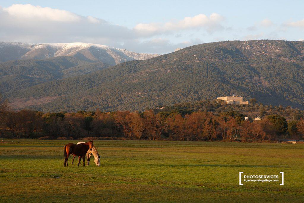 La Adrada. Ávila. Castilla y León. España. © Javier Prieto Gallego