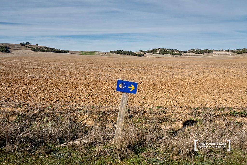 Señalización del Camino a Santiago del Sureste a su paso por la provincia de Valladolid cerca de Vega de Valdetronco. Castilla y León. España © Javier Prieto Gallego;