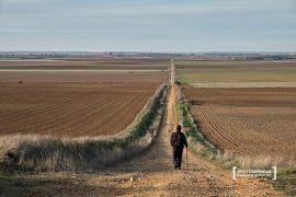 Senderista. Camino a Santiago del Sureste a su paso por la provincia de Valladolid. Castilla y León. España © Javier Prieto Gallego;