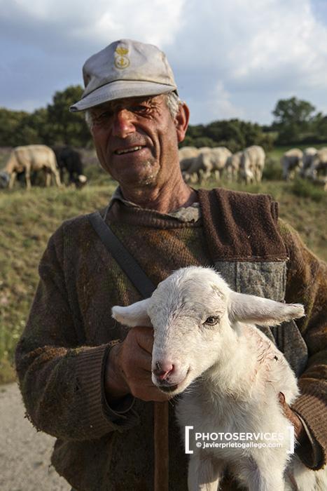 Pastor con un borrego recién nacido. Bonilla de la Sierra. Ávila. Castilla y León. España.