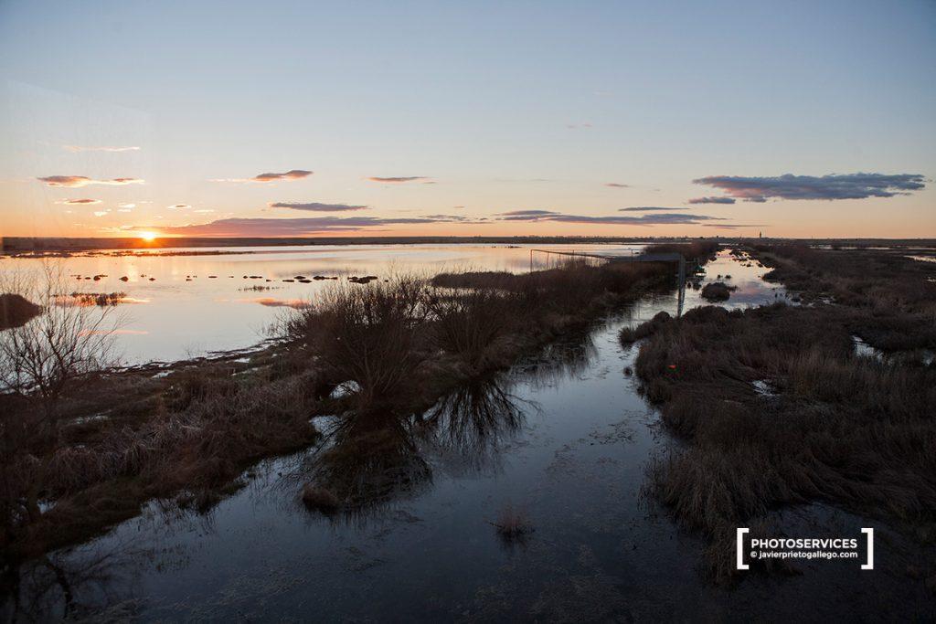 La Laguna de La Nava, incluida en la Ruta de las Aves. Fuentes de Nava. Palencia. Castilla y León. España © Javier Prieto Gallego